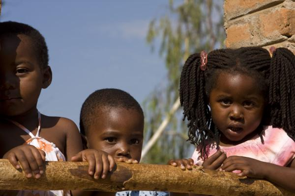 Picture of Curious stare of Malawian school kids in Nkhata Bay
