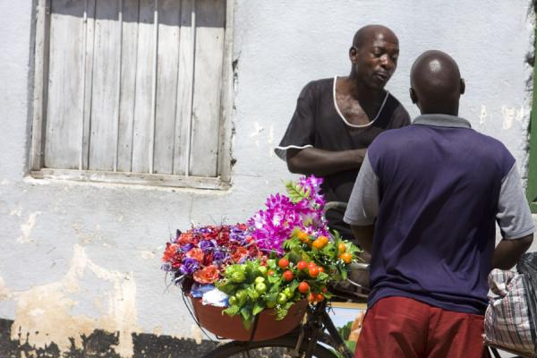Malawian men and bicycle with flowers in Chilumba | Malawianos | Malawi
