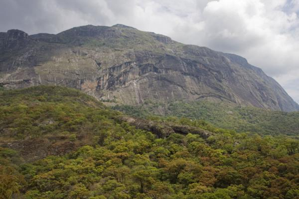 Foto di Chilemba Peak sticking out of the landscape belowMulanje - Malawi