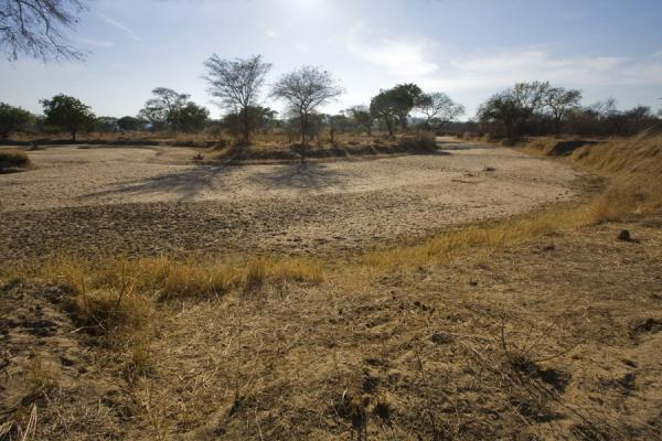 Picture of Vwaza Marsh Game Reserve (Malawi): End of the dry season: dry river bed in Vwaza Marsh Game Reserve
