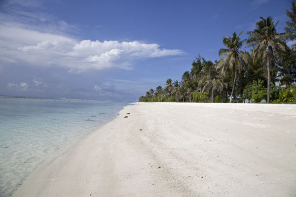 Photo de The white public beach of HulhumaléHulhumalé - Maldives