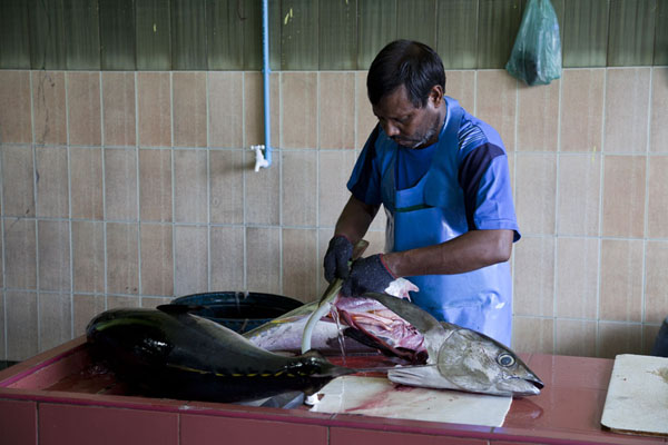 Man cutting up a yellowfin tuna at the fish market of Malé | Malé Fish Market | Maldives