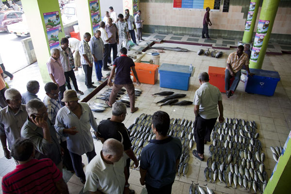 Photo de Overview of the fish market of MaléMalé - Maldives