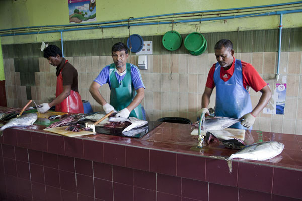 Picture of Men cleaning fish at the market of Malé