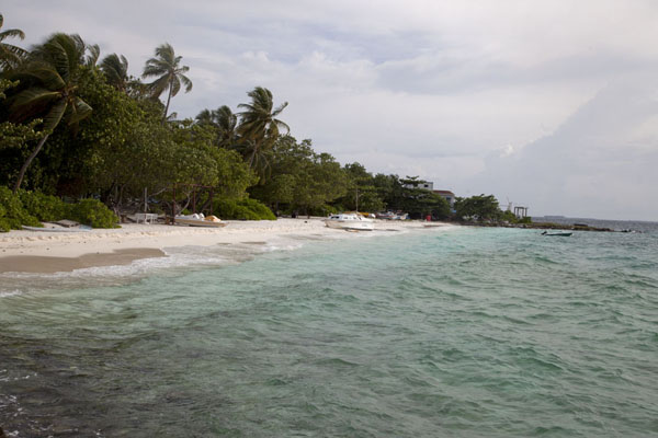 Picture of White-sand beach on the western side of Viligili island - Maldives - Asia