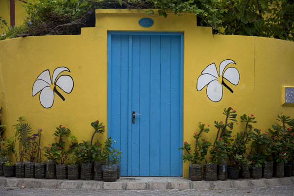 Yellow walls with flowers and blue door | Ile Viligili | Maldives