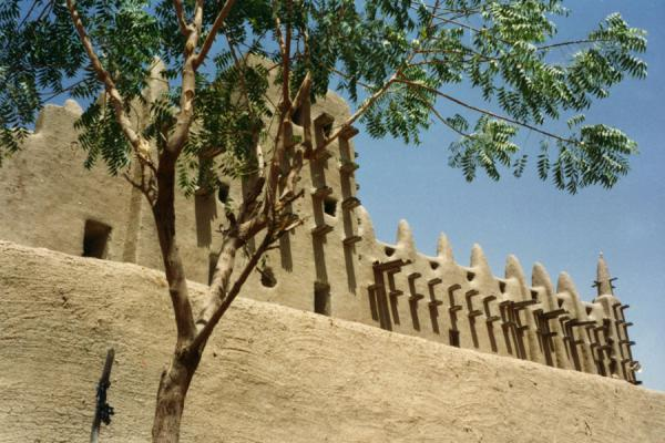 A side view of the Great Mosque | Djenné Great Mosque | Mali