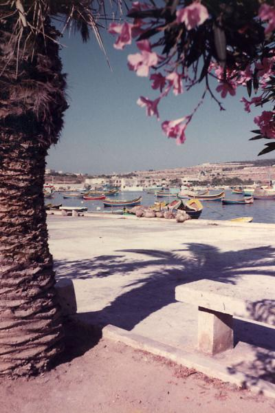 Photo de Malte (Maltese harbour)