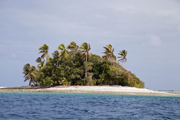 Islet with palm trees rising from the sea | Eneko Island | Marshall Islands