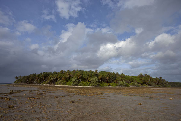 Photo de View of an islet of the Majuro atoll at low tideEneko -