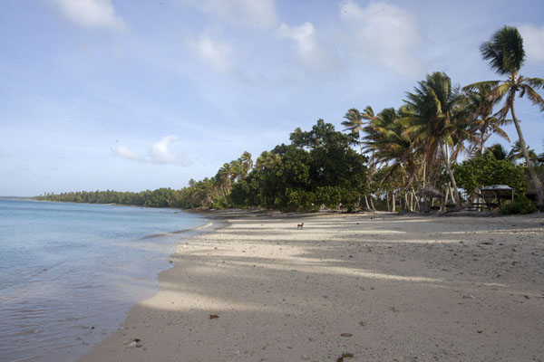 Wide beach at Enemanot islet at low tide | Eneko Island | Marshall Islands