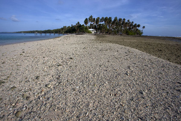 Looking at Enemanot island with beach at low tide | Eneko Island | Marshall Islands