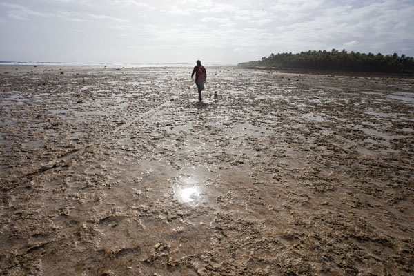 Picture of Local walking towards the main island at low tide with his dogEneko - Marshall Islands