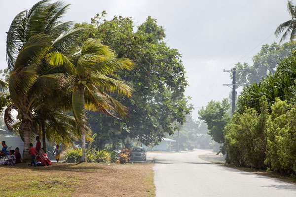 Picture of Laura (Marshall Islands): Road in Laura with trees on both sides