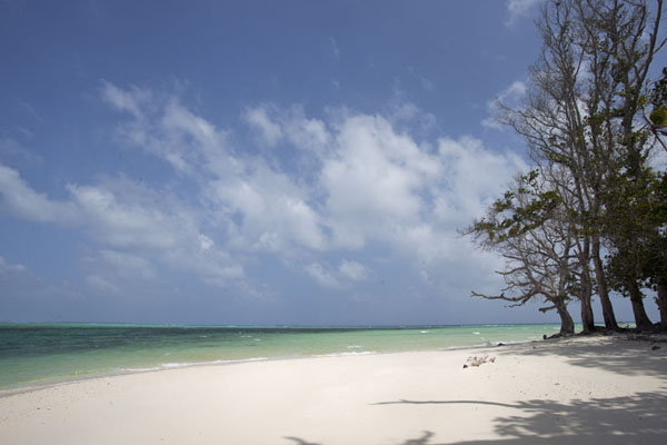Foto van Splendid white beach marking the end of the Majuro atoll at LauraLaura -