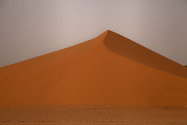 One of the many sand dunes in an orange shade before sunset | Adrar Sahara camel trek | Mauritania