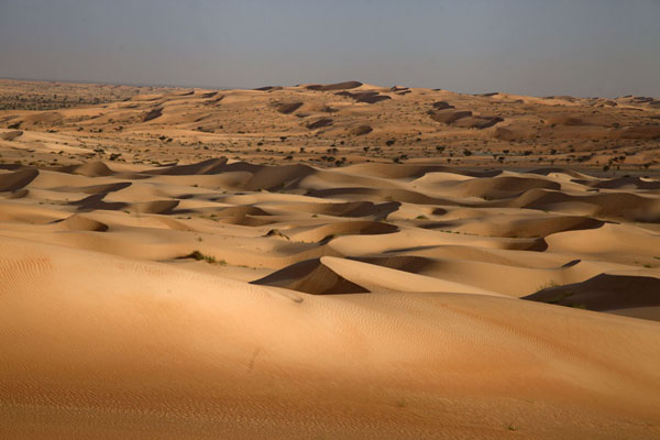 Sea of sand dunes in the Sahara desert | Adrar Sahara camel trek | Mauritania