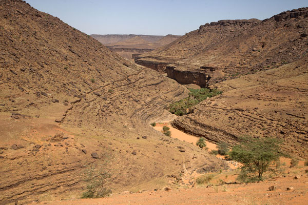 Foto de Mauritania (View of the canyon of Terjit in which you can find the oasis)