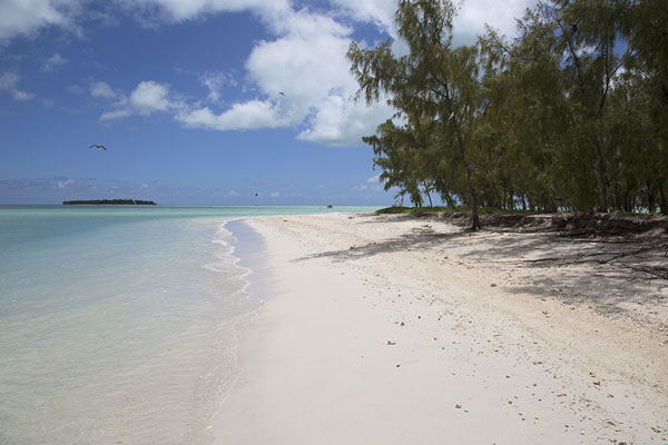 The splendid beach of Ile aux Cocos with Ile aux Sables in the background - 模里西斯