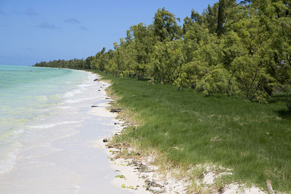 Foto van The beach on the eastern side of Ile aux CocosIle aux Cocos - Mauritius