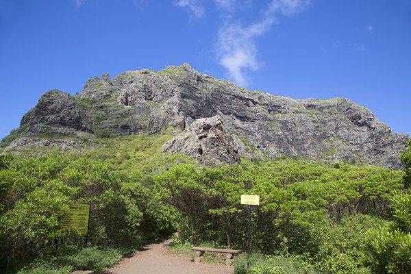 View of the top of Le Morne Brabant from below | Le Morne Brabant | Mauritius