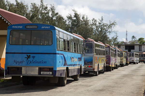 Row of buses at Port Mathurin bus station | Bussen van Mauritius | Mauritius