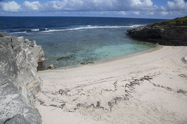 Photo de The beach of Anse Philibert is your chance of a dip before returning to Saint Francois - Maurice - Afrique