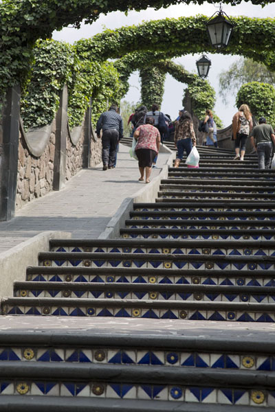 Foto van Looking up the stairs leading to Tepeyac hill and to Iglesia Cerrito - Mexico - Amerika