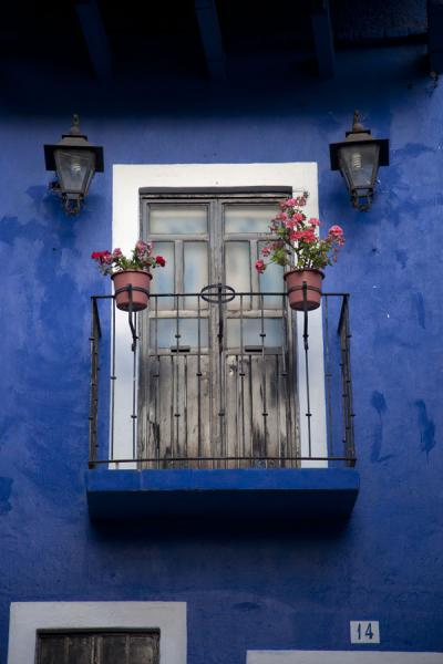 Window with flowers in Guanajuato | Historic town of Guanajuato | Mexico