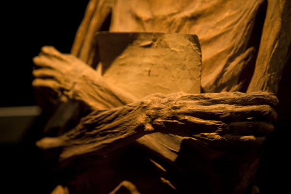 Close-up of folded hands of a mummy | Mummies Museum | Mexico