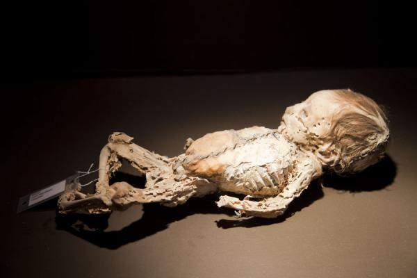 Mummified infant lying in the museum | Mummies Museum | Mexico