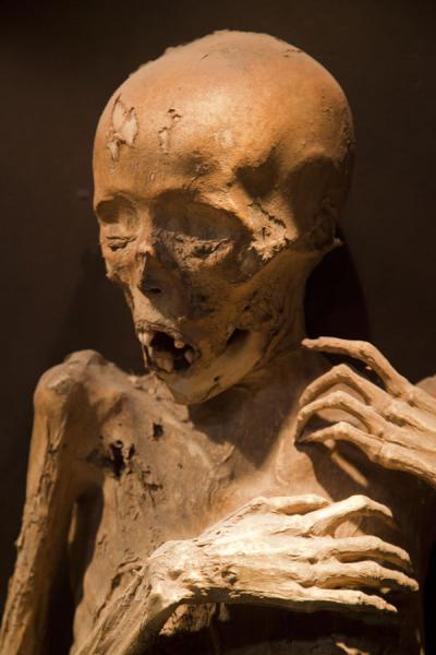 Mummy turning into a skeleton | Mummies Museum | Mexico
