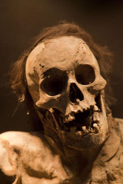 Picture of Skull covered by hair of a mummy on display