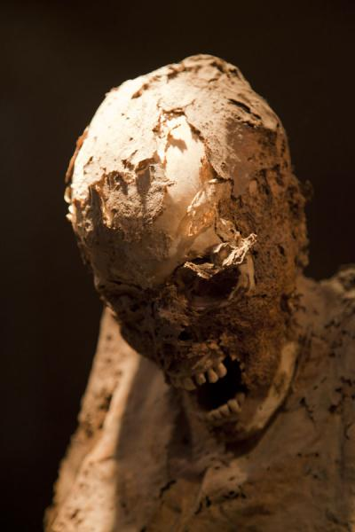 Skin peeling off this skull of one of the mummies standing in the museum | Mummies Museum | Mexico