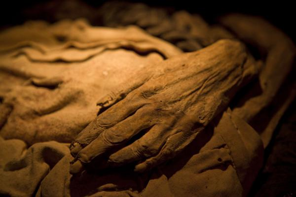 Close-up of mummified arms and hands of a mummy | Mummies Museum | Mexico