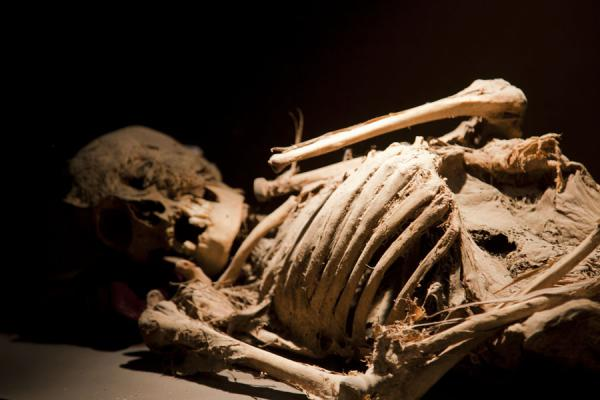 Mummy disintegrating into a skeleton | Mummies Museum | Mexico