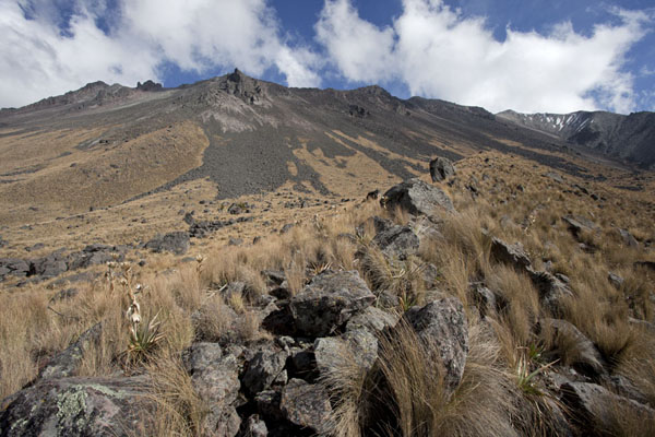 Picture of Looking up the Nevado de Toluca from the western sideNevado de Toluca - Mexico