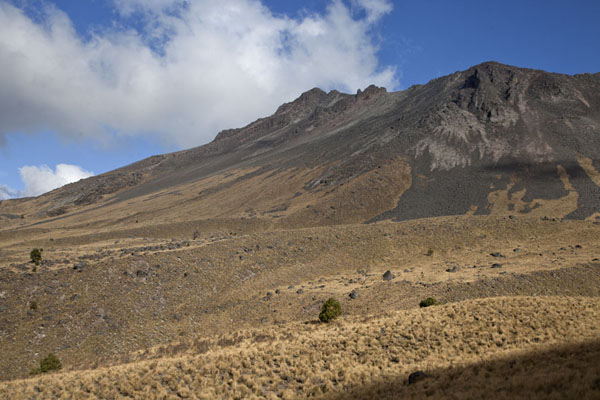 Picture of Looking up the slopes of Nevado de TolucaNevado de Toluca - Mexico