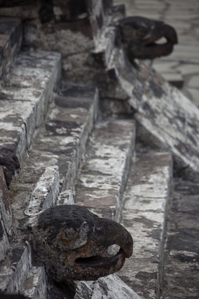 Stairs with eagle heads at the Casa de las Aguilas on the northern side of Templo Mayor | Templo Mayor | Mexico