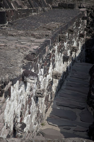 Picture of Serpent heads on a wall of Templo Mayor