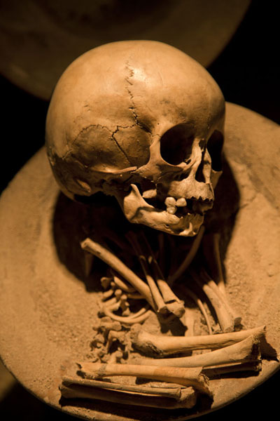 Picture of Skull with bones in the Museum of Teotihuacan