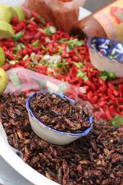 Picture of Zocalo (Mexico): Zocalo, Mexico City: spicy local food for sale
