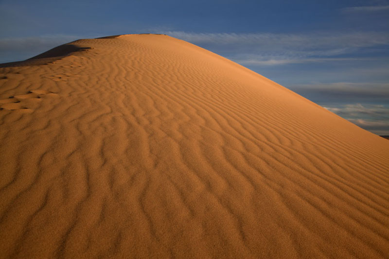Looking up a sand dune at the end of the day | Khongoryn Els | Mongolia