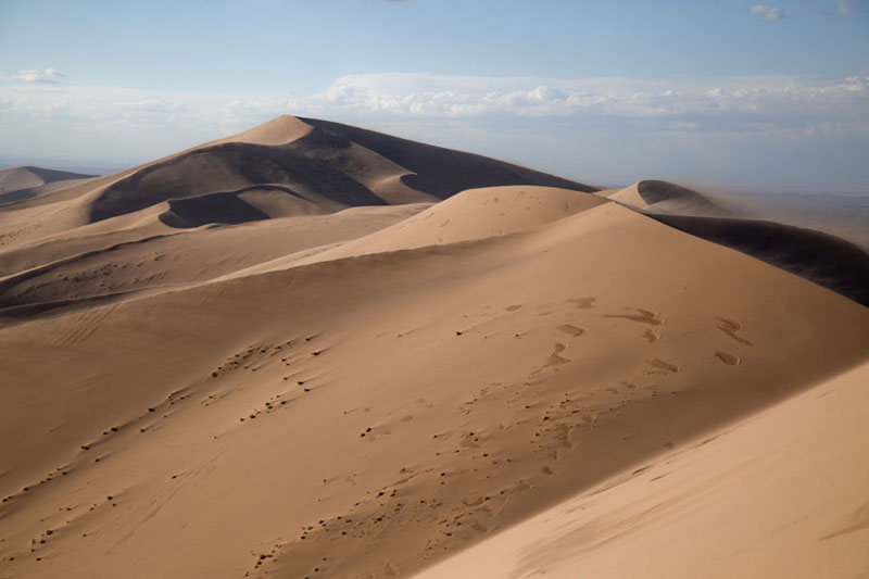 Photo de Looking towards the highest sand dunes of Khongoryn ElsKhongoryn Els - Mongolie