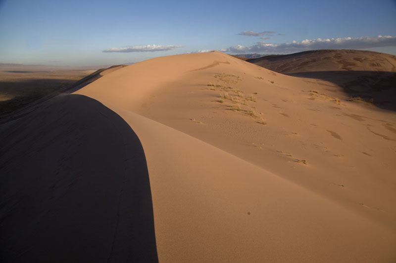 Photo de Sharp line of a sand dune in the Gobi desertKhongoryn Els - Mongolie