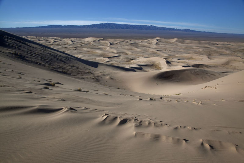 Photo de Looking south across the sand dunes of Khongoryn ElsKhongoryn Els - Mongolie