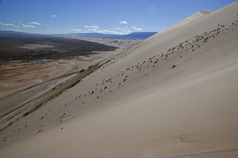 Steep slope of a sand dune of the Gobi desert at Khongoryn Els | Khongoryn Els | Mongolia