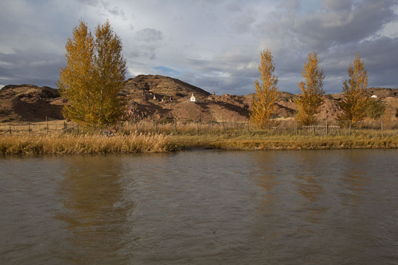 Row of trees along the river with ruins of Ongiin Khiid in the background | Ongiin Khiid | Mongolia