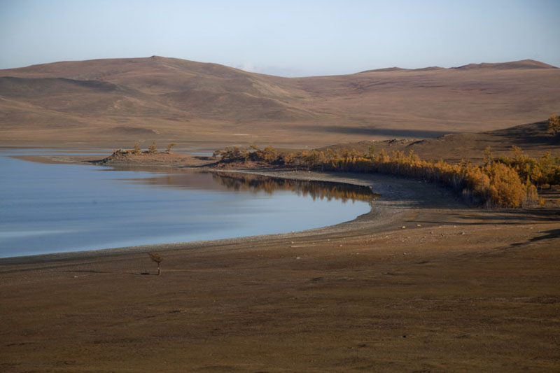 The southern side of Zuum Lake with a small forest | Zuum Nuur | Mongolia