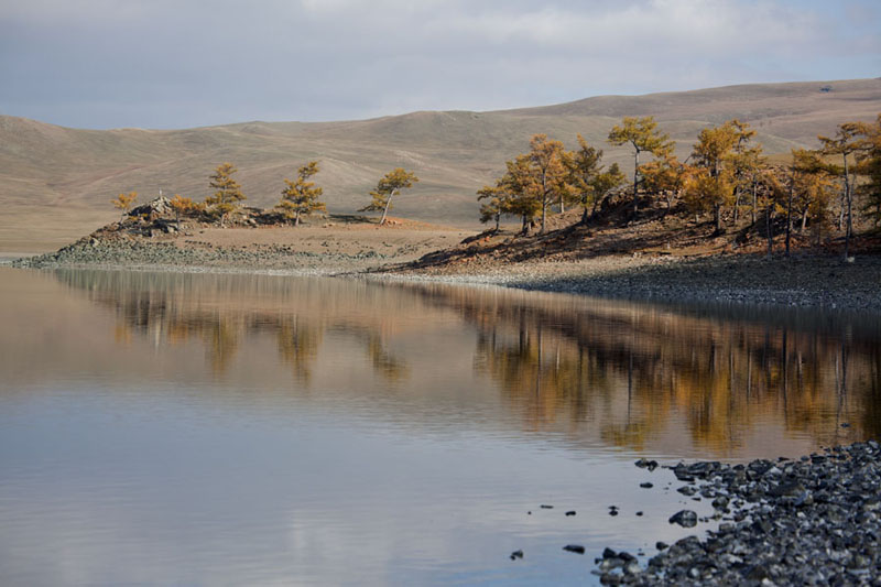 Photo de The southern shore of Zuum Nuur with trees reflected in the lakeZuum Nuur - Mongolie